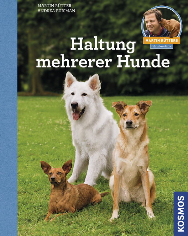 Haltung mehrerer Hunde: Martin Rütters Hundeschule - Andrea Buisman, Martin Rütter