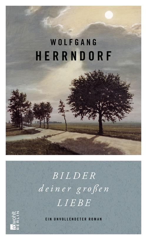 Bilder deiner großen Liebe: Ein unvollendeter Roman - Wolfgang Herrndorf [Gebundene Ausgabe]