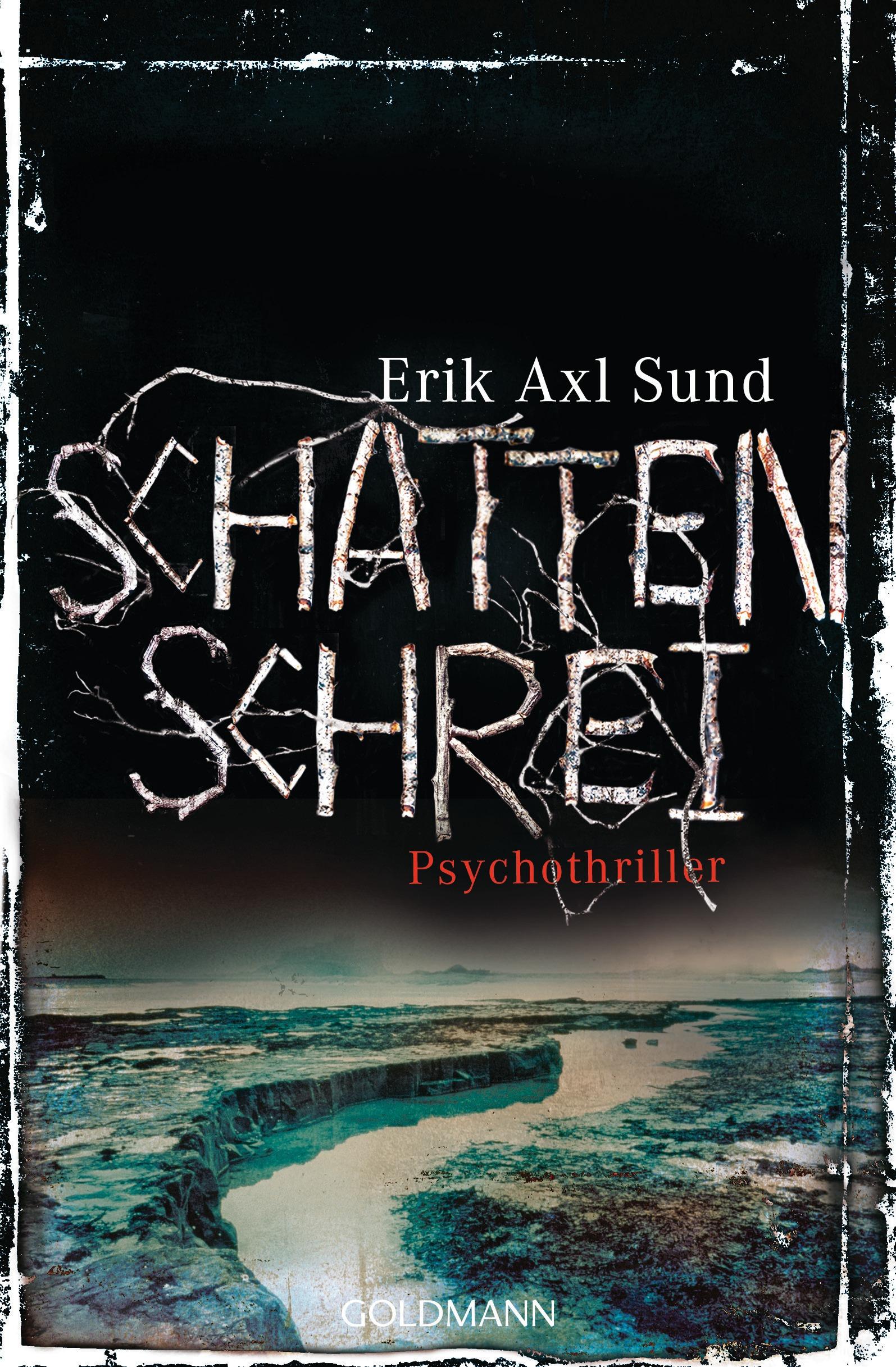 Schattenschrei - Erik Axl Sund [Broschiert]