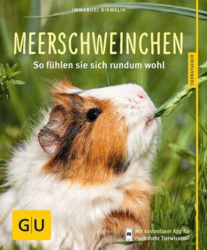 Meerschweinchen: So fühlen sie sich rundum wohl - Immanuel Birmelin [Taschenbuch]