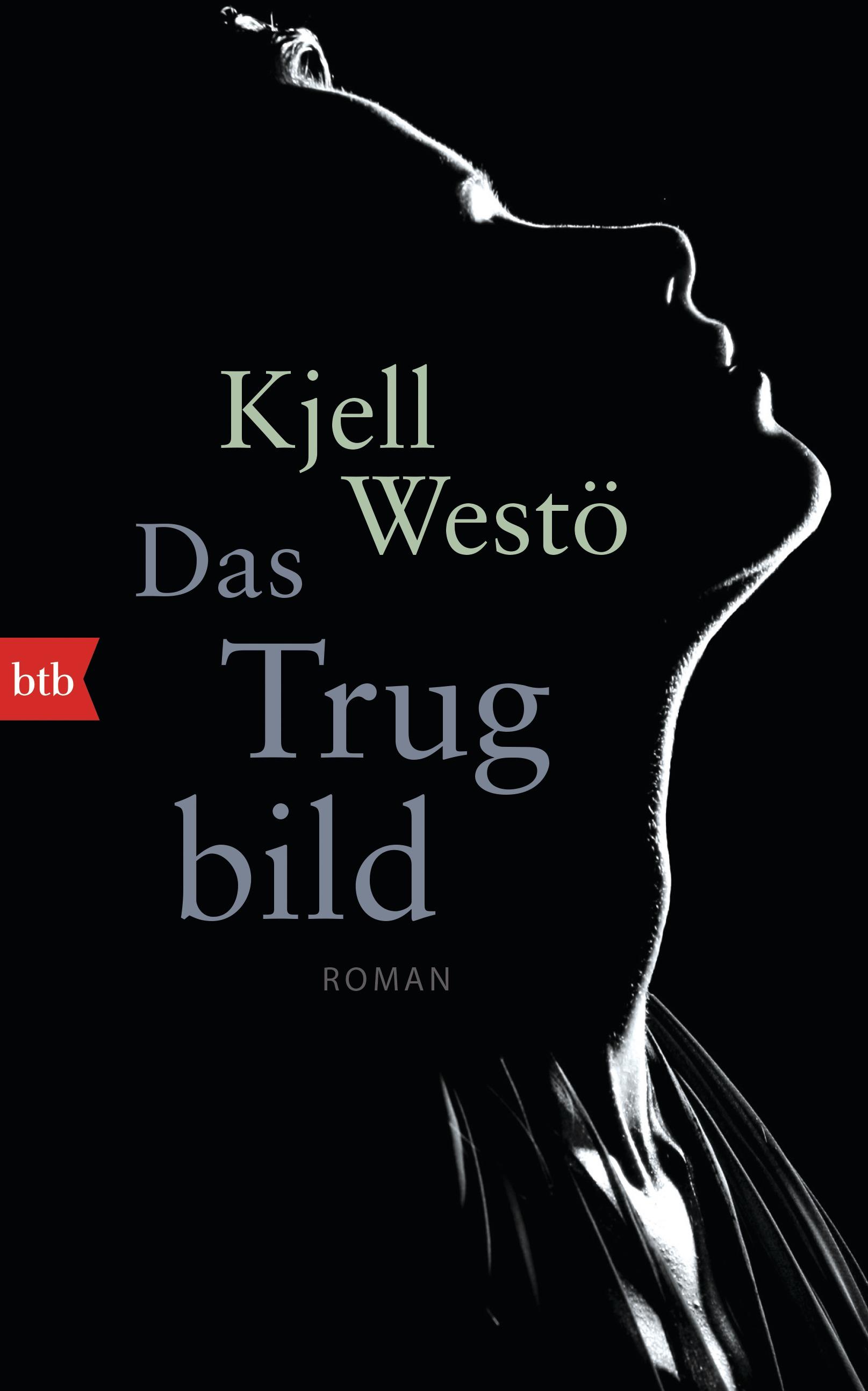 Das Trugbild - Kjell Westö
