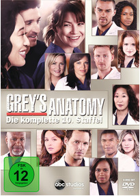 Greys Anatomy Staffel   Dvds