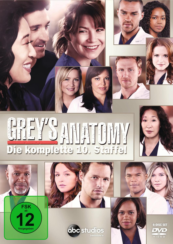 Grey´s Anatomy - Staffel 10 [6 DVDs]