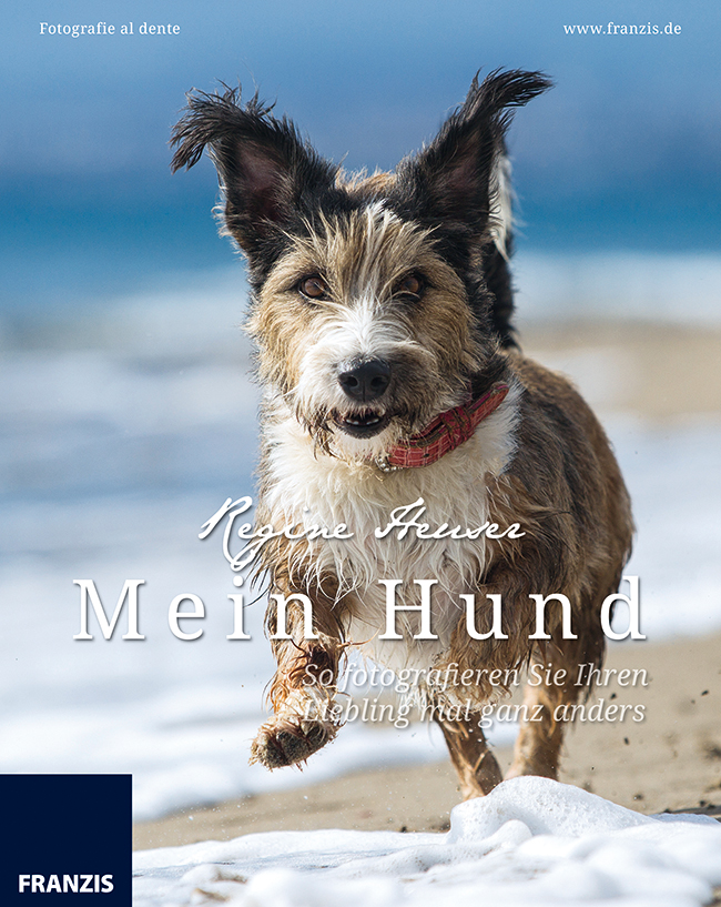Fotografie al dente: Mein Hund - So fotografier...