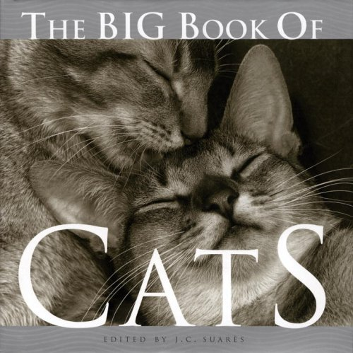 The Big Book of Cats (Big Book of . . . (Welcom...