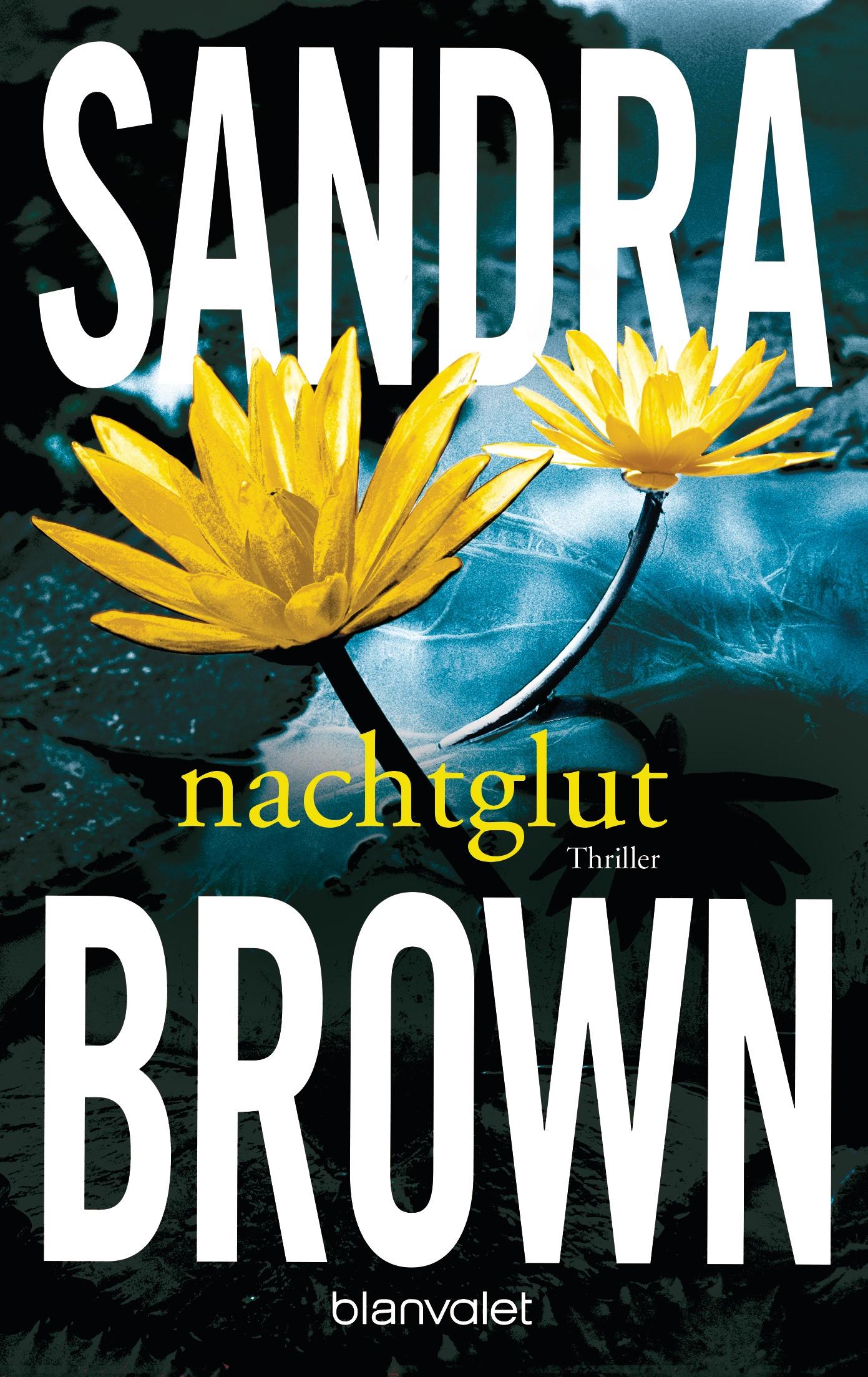 Nachtglut - Sandra Brown