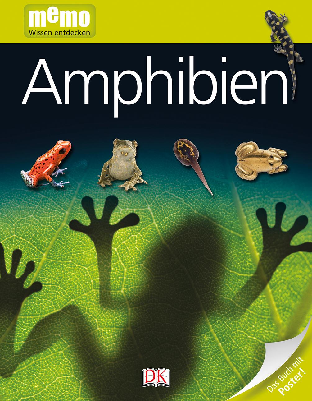 memo Wissen Entdecken, Band 84: Amphibien, mit ...