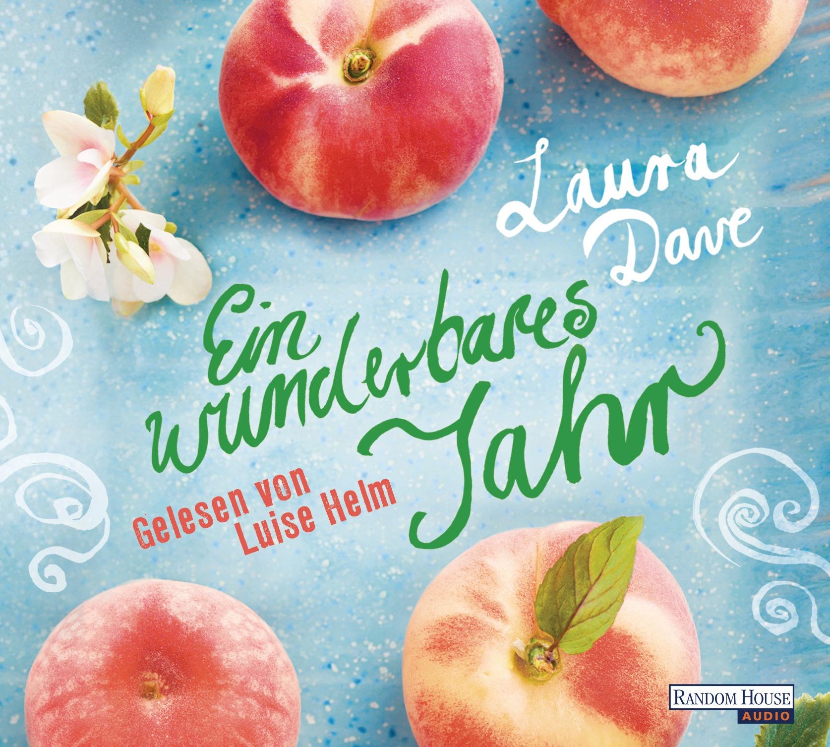 Ein wunderbares Jahr - Laura Dave [5 Audio CDs]