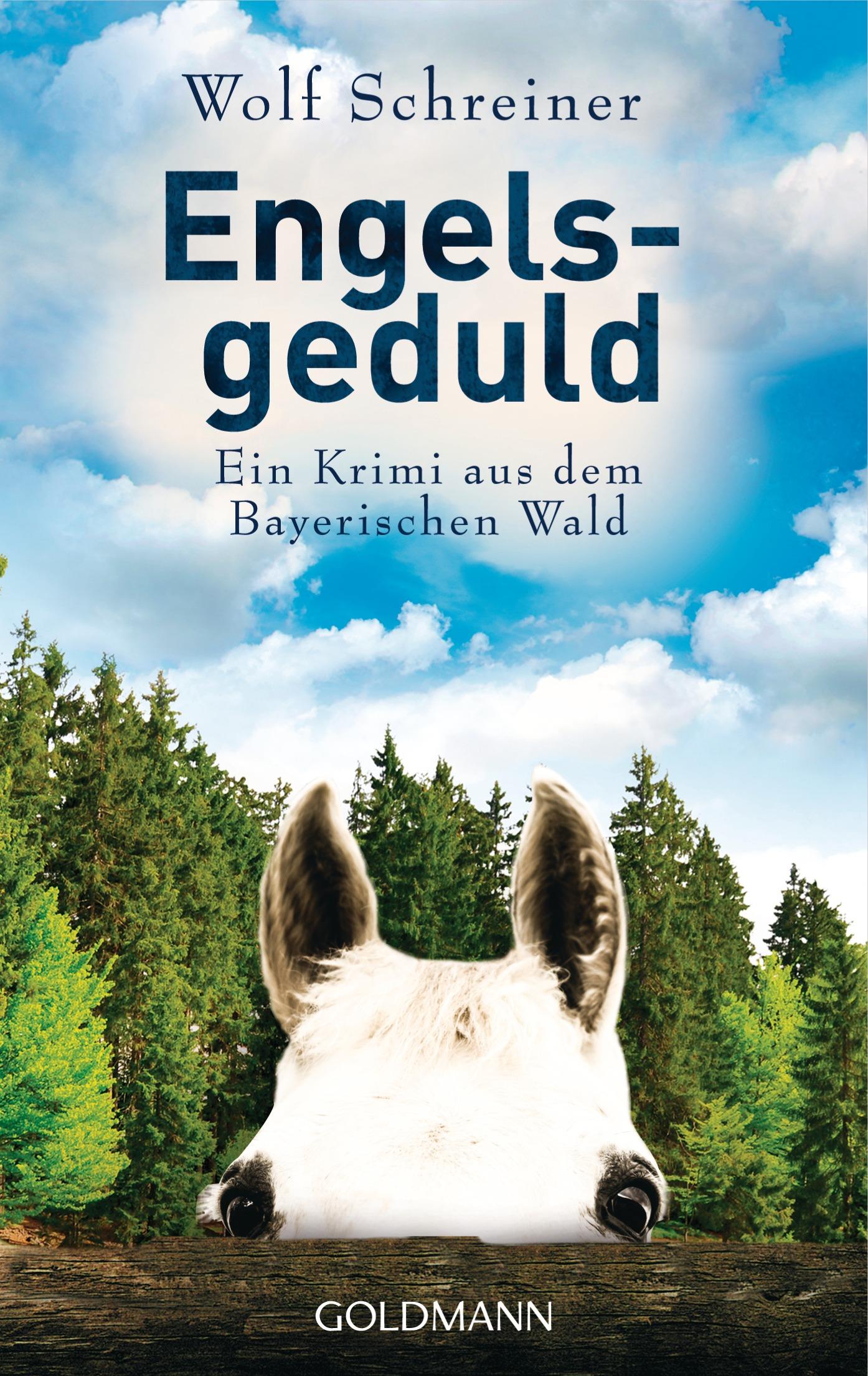 Engelsgeduld: Ein Fall für Pfarrer Senner 5 - Ein Krimi aus dem Bayerischen Wald - Wolf Schreiner