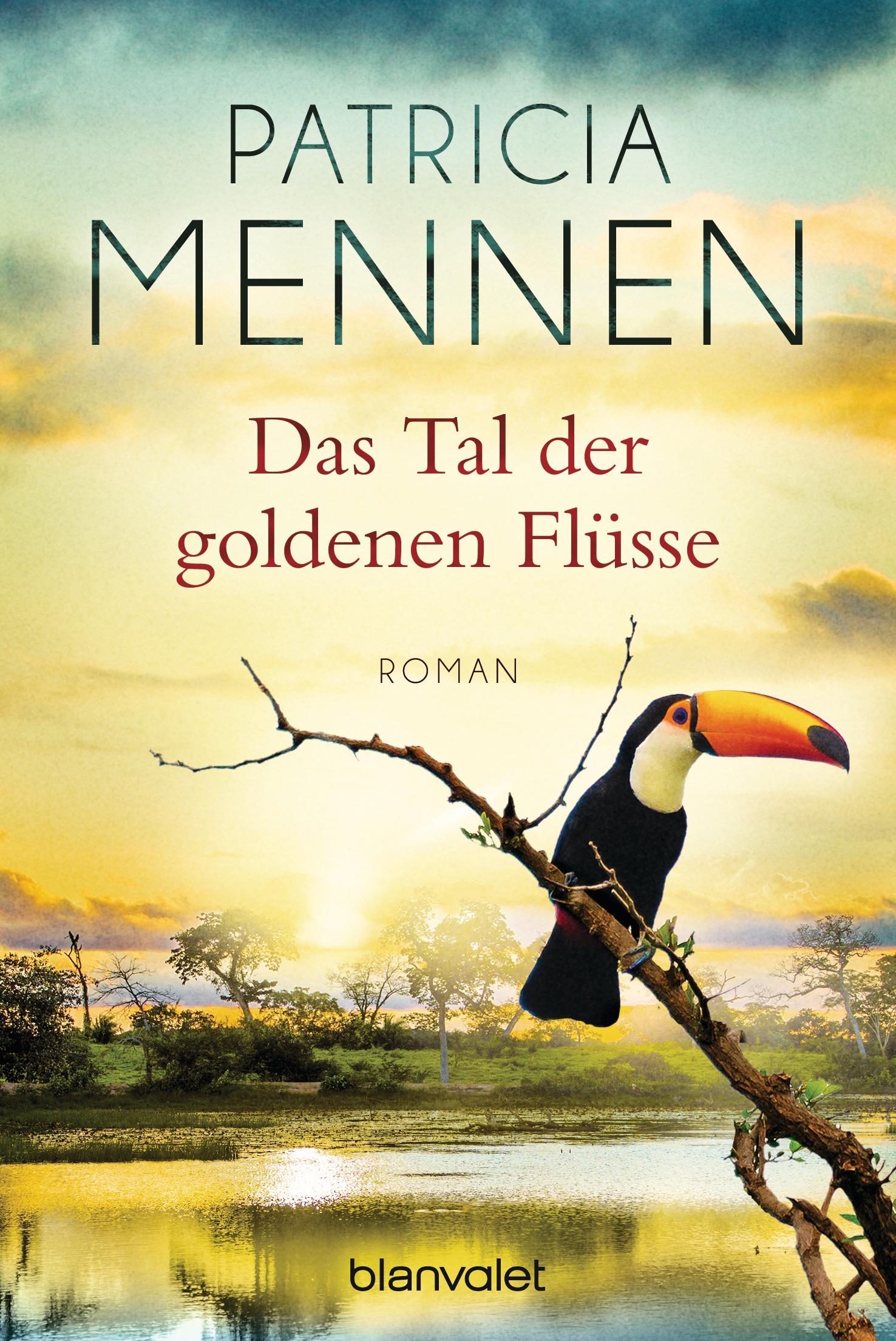 Indien Saga: Band 2 - Das Tal der goldenen Flüsse - Patricia Mennen