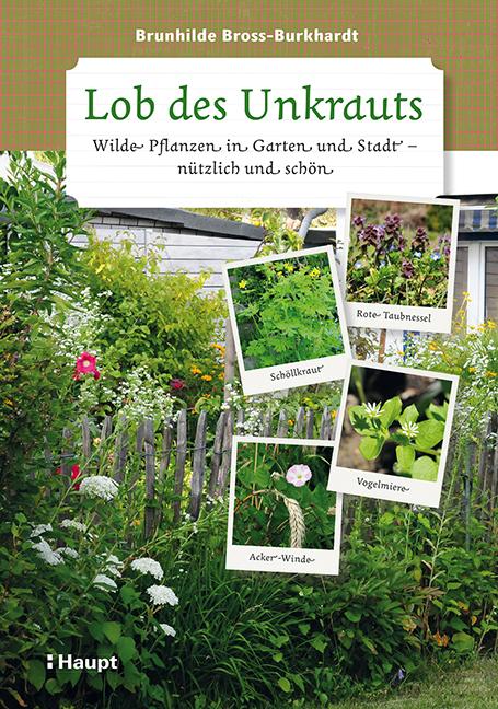 Lob des Unkrauts: Wilde Pflanzen in Garten und ...