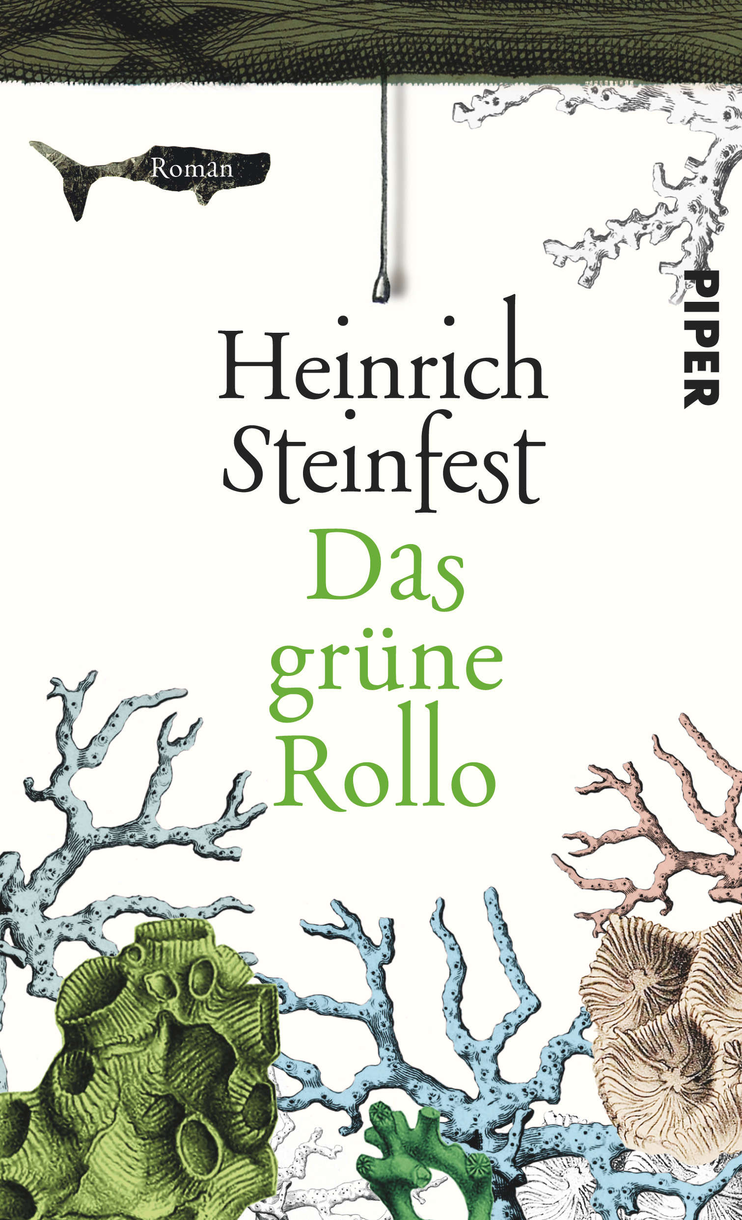 Das grüne Rollo - Heinrich Steinfest