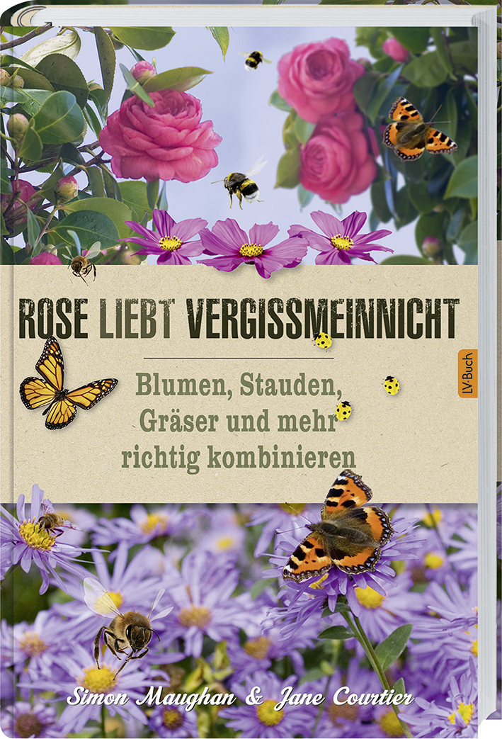 Rose liebt Vergissmeinnicht - The Ivy Press LTD