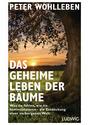 Das geheime Leben der Bäume: Was sie fühlen, wie sie kommunizieren - die Entdeckung einer verborgenen Welt - Wohlleben, Peter