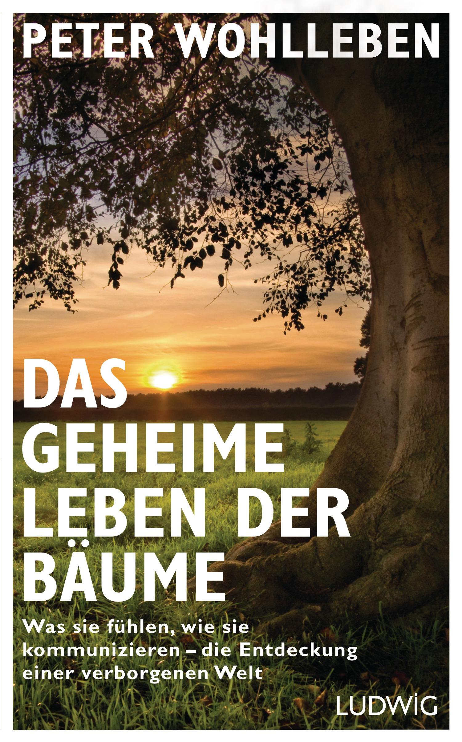 Das geheime Leben der Bäume: Was sie fühlen, wie sie kommunizieren - die Entdeckung einer verborgenen Welt - Wohlleben,