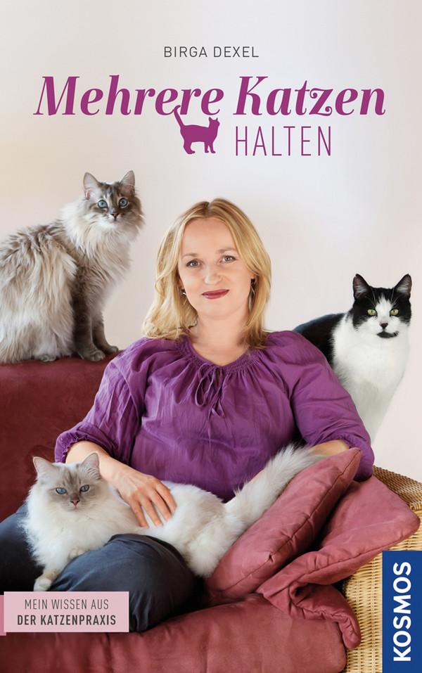 Mehrere Katzen halten: Mein Wissen aus der Katzenpraxis - Dexel, Birga
