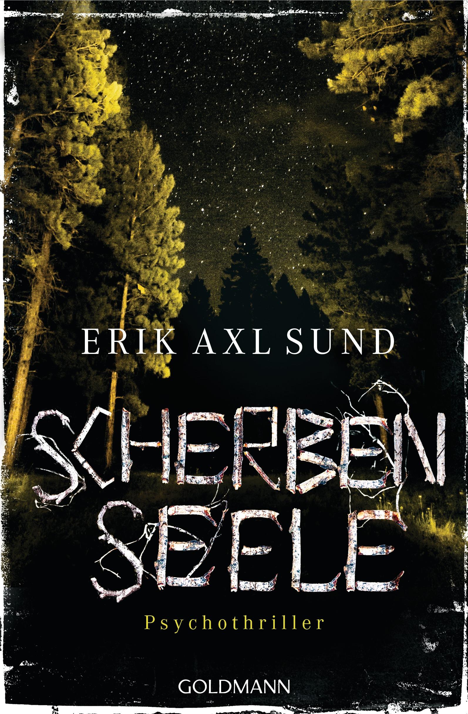 Scherbenseele - Erik Axl Sund