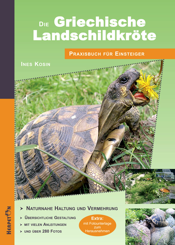 Die Griechische Landschildkröte: Praxisbuch für...
