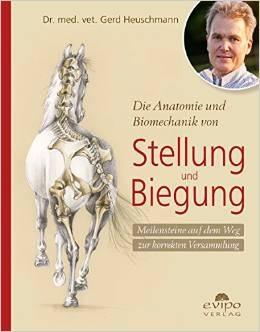 Die Anatomie und Biomechanik von Stellung und Biegung - Gerd Heuschmann
