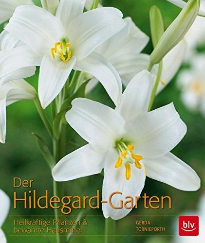 Der Hildegard-Garten: Heilkräftige Pflanzen & b...