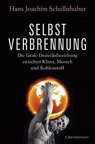 Selbstverbrennung: Die fatale Dreiecksbeziehung zwischen Klima, Mensch und Kohlenstoff - Schellnhuber, Hans Joachim