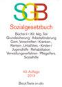 SGB: Sozialgesetzbuch [42. Auflage 2013]