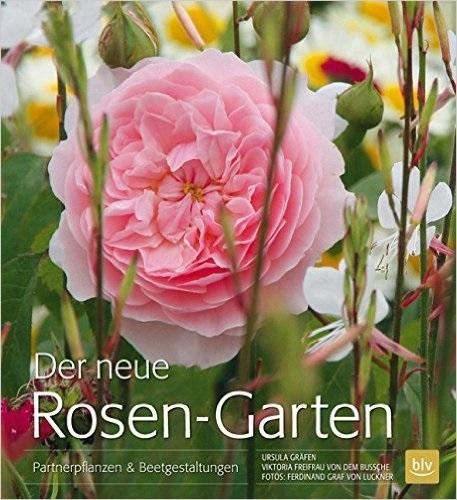 Der neue Rosen-Garten: Partnerpflanzen & Beetge...