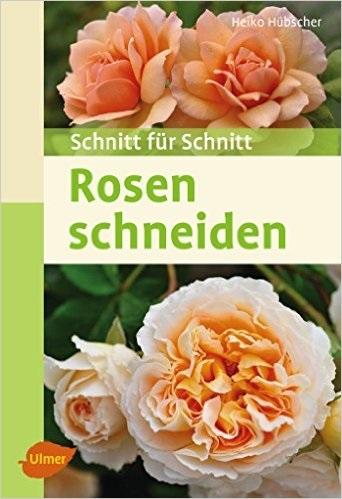 Rosen schneiden: Schnitt für Schnitt - Heiko Hü...