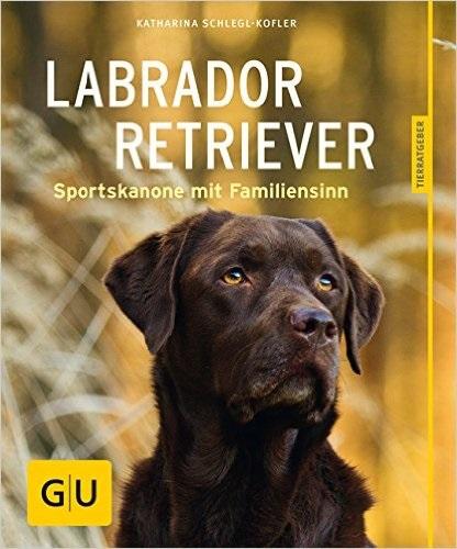 Labrador Retriever: Sportskanone mit Familiensinn - Katharina Schlegl-Kofler