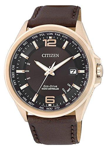 Citizen Elegant - Evolution 5 - World Timer CB0017-03W