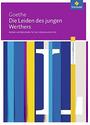 Johann Wolfgang von Goethe: Die Leiden des jungen Werthers - Module und Materialien für den Literaturunterricht -  Luzia Scheuringer-Hillus [Broschiert]