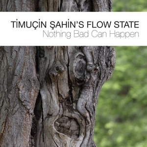 Sahin,Timuçin´s Flow State - Nothing Bad Can Happen