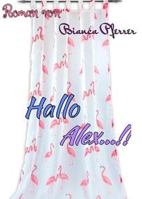 Hallo Alex - Bianca Pferrer  [Taschenbuch]